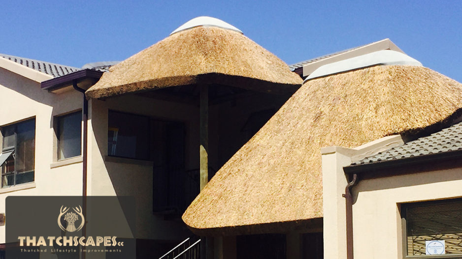 Latest Thatch Roofing Projects Thatching Company Cpt